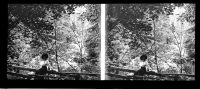 Belle Plaque Stereo Début De Siècle Sur Un Pont Au Dessus De La Warche - Glasplaten