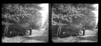 Belle Plaque Stereo Début De Siècle Belle Dame Promenade à Laroche Sepia - Plaques De Verre
