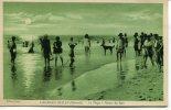 CPA : LACANAU OCEAN : La Plage à L´heure Du Bain : Des Personnes Dans L´eau Ainsi Qu´un Grand Chien Noir Au Milieu - France