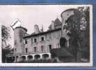 Carte Postale 71. Saint-Point  Chateau De Lamartine Très Beau Plan - Unclassified