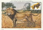 D05966 CARTE MAXIMUM CARD 2011 NETHERLANDS - LION CP MUSEE ORIGINAL - Big Cats (cats Of Prey)