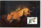 D05970 CARTE MAXIMUM CARD 2011 NETHERLANDS - LEOPARD CP ORIGINAL - Big Cats (cats Of Prey)
