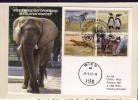 Sonderpostbeförderung:  Elefantenpost !! - Elefanten