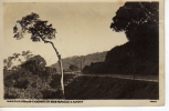 CAMINO DO MAR SAN PAULO SANTOS   OHL - Postcards