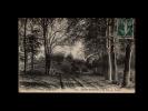 35 - SAINT-SERVAN - Le Bois De Troctin - 1574 - Saint Servan