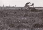 """AVIATION ACCIDENT D´ AVION PHOTOGRAPHIE ANCIENNE PHOTO """" BIZERTE KAROUBA 1939 """"  INSCRIPTION AU DOS - Photographie"""