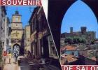 Souvenir - De Salon . La Patrie De Nostradamus - 23044 - Non Viaggiata Formato Grande - Salon De Provence