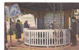 20480 Chatel Guyon Chatelguyon - Parc  Source Yvonne -92 Cap Colorisée - Châtel-Guyon