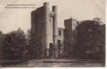 58 Environs De La Charité (Niévre) Ruines Du Château De PASSY LES TOURS - Autres Communes