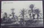 LIBIA 1913, Con Bollo Della Capitaneria Di Porto Di ZUARA! - Libia