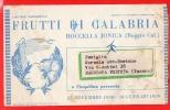 PALMI-REGGIO CALABRIA-TESTATINA-CONCERTO MUSICALE F. Cilea - Reggio Calabria