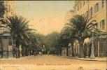 AJACCIO. Avenue Du Premier Consul - Ajaccio