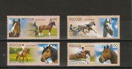 Russia 2007 Native Horse Breeds Domestic Horses Riding Sports Mammals Nature Fauna Farm Animals Michel BL107 (1441-1444) - Horses