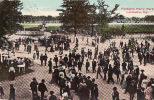 8692    LOUISVILLE   Fontaine Ferry Park     Circulée 1911 - Louisville