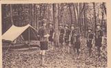 SCOUTISME BOY SCOUTS SCOUTISMO  ( L' INSPECTION  ) - Scoutisme
