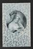 Jolie Femme Lisant Un Livre. Portrait Dans Médaillon, Entouré De Petites Roses. Belle Illustration. - Illustrators & Photographers
