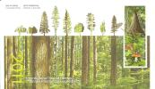 FDC 2011  CANADA - Pilze