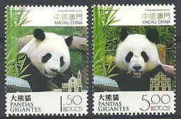 2010 MACAO  GIANT PANDA 2V - 1999-... Chinese Admnistrative Region