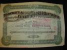 """Action De Dividende""""Tramways Et Electricité De Constantinople""""1914,Istanbul Turquie.Turkey - Railway & Tramway"""