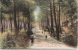 Arcachon (Gironde) France, Route Du Pilat, Le Moulleau C1910s Vintage Postcard - Arcachon