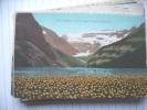 Canada Alberta Canedian Rockies Lake Louise The Poppies - Alberta