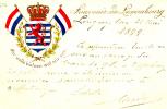 6336# SOUVENIR DE LUXEMBOURG MIR WELLE BLEIWEN WAT MIR SEN 1899 BLASON ET DRAPEAUX EN RELIEF PAPETERIE FAYOT - Cartes Postales