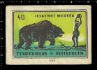 Poster Stamp - Czech Matchbox Label -  Solo Lipnik  -  Prehistoric Animals, Dinosaur, Cave Bears, Höhlenbär - Matchbox Labels