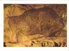 24 Les Eyzies De Tayac - Grotte Du Font De Gaume En Périgord - France