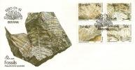 1990 Transkei FDC  Fossils Ginkgo Pseudoctenis Taeniopteris Cachet Ginkgo Koningensis Sc.231-234 - Transkei