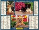 ALMANACH DES PTT  2006 RHONE - Calendars