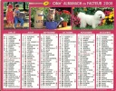 ALMANACH DES PTT  2008 RHONE - Kalender