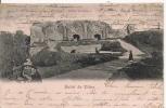 SALUT DE VILNA  RUINES DU CHATEAU 1902 - Litauen
