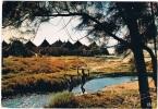 AFR-563  NIGERIA : African Village - Nigeria