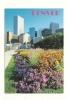 Cp, Etats-Unis, Denver, A Summer Vieuw Of Civic Center Parkin The Heat Of Downtown Denver, écrite - Denver