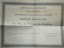 DIPLOME RECOMPENSE BELLES ACTIONS SAUVETAGE  NOYADE JURA 1893 MINISTERE INTERIEUR - Documentos