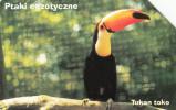 POLAND - Toucan, Used - Oiseaux