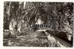BRIVE - N° 9021 - LES ALLEES DU PARC ET LE CANAL - Brive La Gaillarde