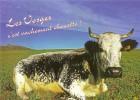 CPM Vache VOSGES Le Hohneck - France
