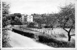 Erezée 6: Pont D'Erezée - Erezee