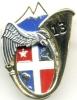 INSIGNE REGIMENT DES CHASSEURS ALPINS 13° BCA 2° COMPAGNIE ETAT EXCELLENT - Army