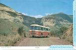 South Africa Afrique Du Sud RSA Air Letter Aerogram Aerogramme Mint Bus Autocar Golden Gate Highlands Park - Poste Aérienne