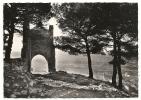 Allauch (13) : Les Ruines De L'ancien Château Et Vue Sur Le Bourg En 1950 PHOTO VERITABLE. - Allauch