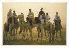 POSTCARD/ CARTE POSTALE / CARTOLINA NIGER - TEGUIDDA I-N-TESSOUM - Niger