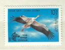 Soviet Union MNH Stamp - Storks & Long-legged Wading Birds