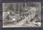 26752    Belgio,   Vallee  De La  Hoegne,   Le  Pont  Du  Renard,   VG   1909 - Spa