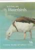 Australia 2012 Waterbirds Booklet Mint Never Hinged - 2010-... Elizabeth II