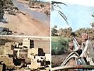 SAUDI  ARABIA  SAUDITA  K S A  ASIR HIGHLANDS IRRIGAZIONE COLTURE CAMPI LAVORO VB1979 DR9720 - Arabia Saudita