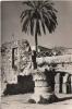 SAINTE ANNE JERUSALEM CARTE PHOTO LE PORTIQUE CENTRAL MOTIFS ARCHITECTURAUX - Israele