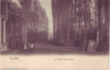 COUILLET = Le Chemin Des Usines - Carte Animée  (Nels  Bxl  S.18 N° 22) Vierge - België