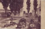 SAINT AMAND = Tombes De Soldats (Nels) 1915 - België
